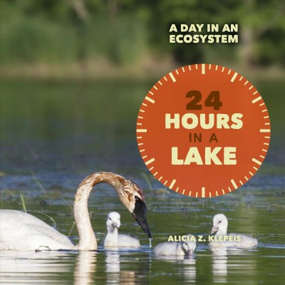 24 Hours on a Lake book cover