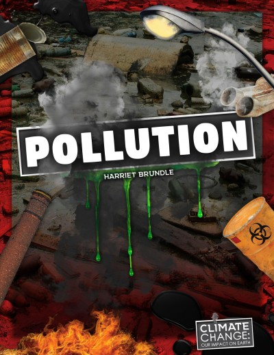Pollution book cover