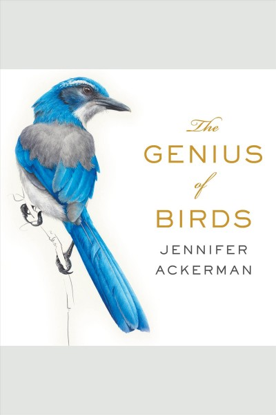 """Image of a book cover with a painting of a blue jay. Text reads """"The Genius of Birds by Jennifer Ackerman"""""""