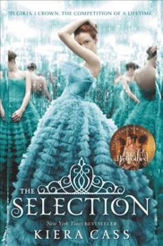 The Selection book cover