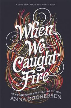 When We Caught Fire book cover